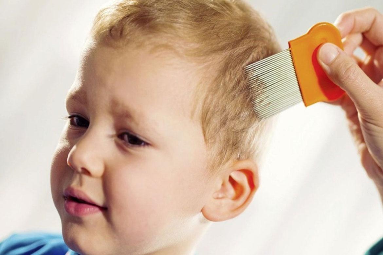 Педикулез в детском саду: действия родителей